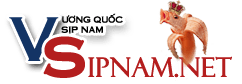 ♕Vua quần lót, sịp nam SỐ 1 VIỆT NAM
