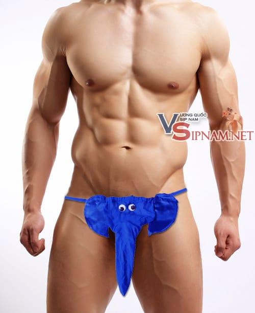 quần lót con voi xanh