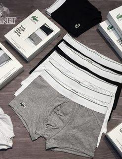 quần sịp lacoste